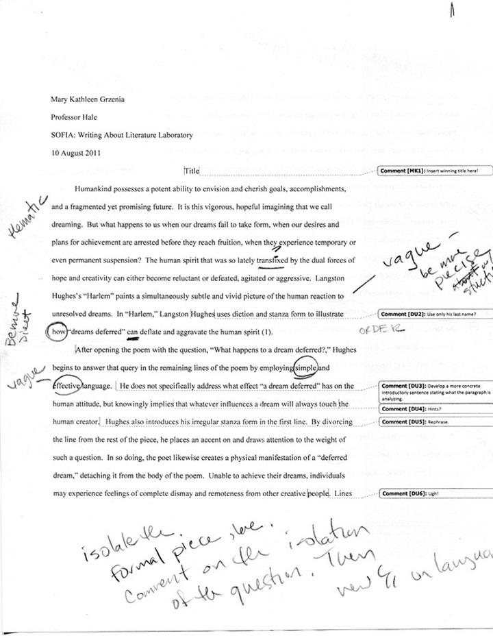 Peer review analytical essay